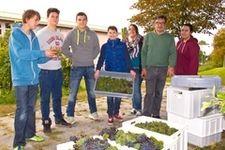 Diplomsommelier Andreas Scheidl mit Schülern