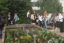 HLW 19 Kräuter- und Gemüsebeet in der Straßergasse