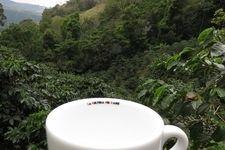 Latte Staatsmeister Benjamin Graf in Panama
