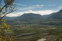 Apfel- und Weingärten im breiten Tal sind überall zu finden