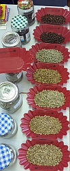Optische Prüfung von Rohkaffee und gerösteten Bohnen